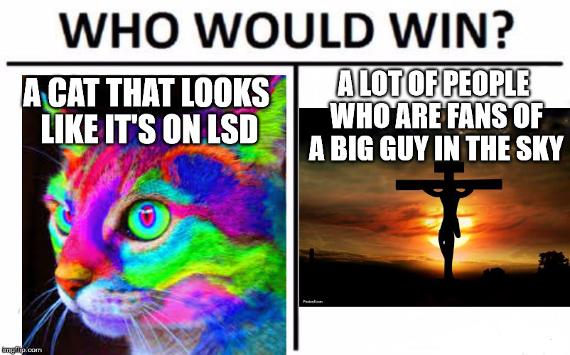 A CAT THAT LOOKS LIKE IT'S ON LSD A LOT OF PEOPLE WHO ARE FANS OF A BIG GUY IN THE SKY | made w/ Imgflip meme maker