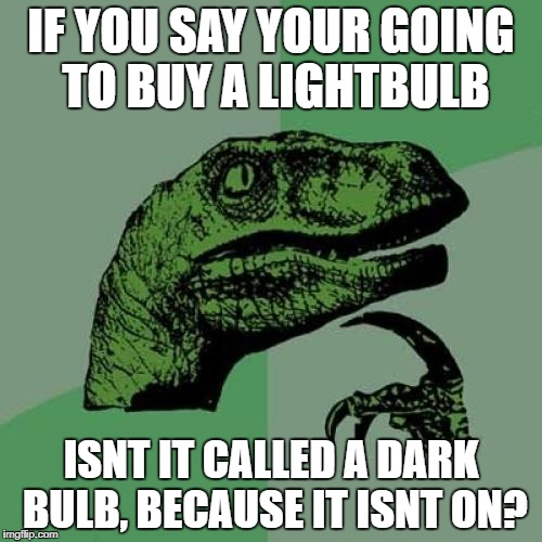 Philosoraptor Meme | IF YOU SAY YOUR GOING TO BUY A LIGHTBULB ISNT IT CALLED A DARK BULB, BECAUSE IT ISNT ON? | image tagged in memes,philosoraptor | made w/ Imgflip meme maker