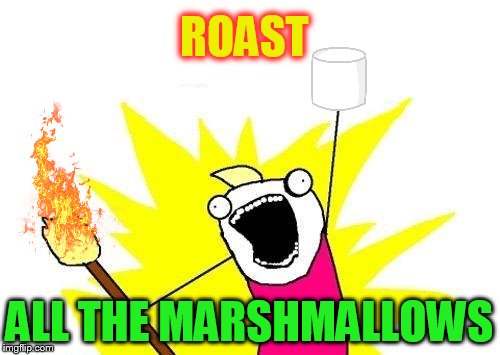 X All The Y Meme | ROAST ALL THE MARSHMALLOWS | image tagged in memes,x all the y | made w/ Imgflip meme maker