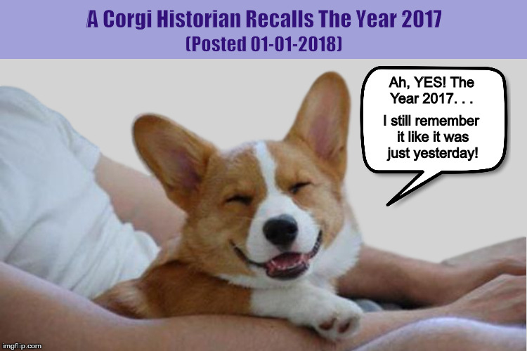 A Corgi Historian Recalls The Year 2017 | image tagged in corgi,new year 2018,funny,memes,dogs,year 2017 | made w/ Imgflip meme maker