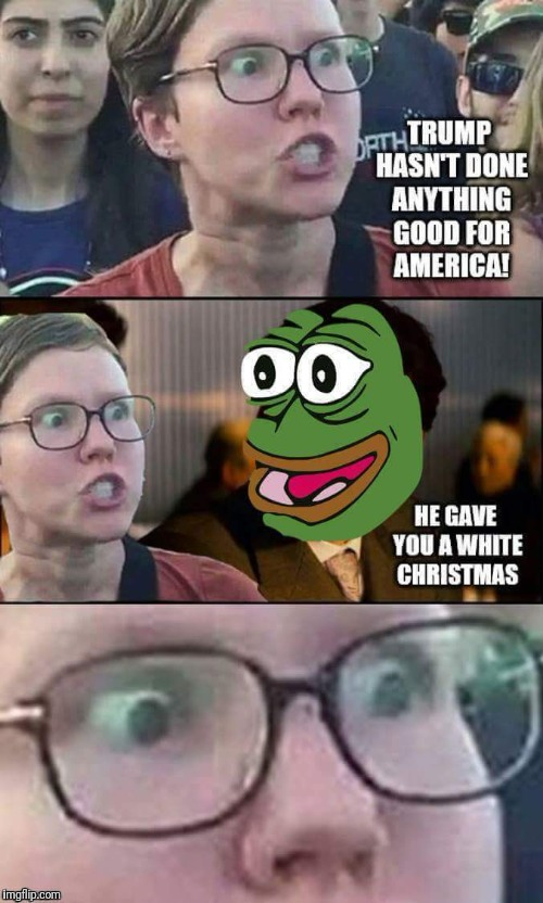 Triggered SJW | HE GAVE YOU A WHITE CHRISTMAS TRUMP HASN'T DONE ANYTHING GOOD FOR AMERICA! | image tagged in donald trump,maga,pepe the frog,dank memes,funny memes,memes | made w/ Imgflip meme maker