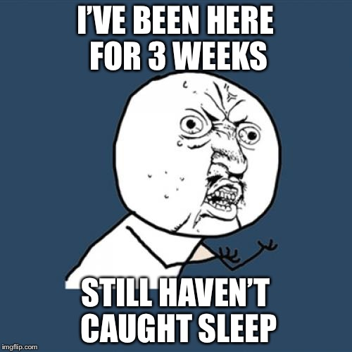 Y U No Meme | I'VE BEEN HERE FOR 3 WEEKS STILL HAVEN'T CAUGHT SLEEP | image tagged in memes,y u no | made w/ Imgflip meme maker