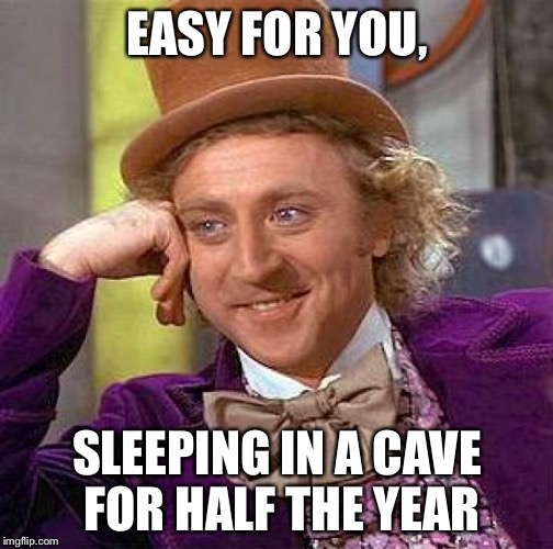 Creepy Condescending Wonka Meme | EASY FOR YOU, SLEEPING IN A CAVE FOR HALF THE YEAR | image tagged in memes,creepy condescending wonka | made w/ Imgflip meme maker