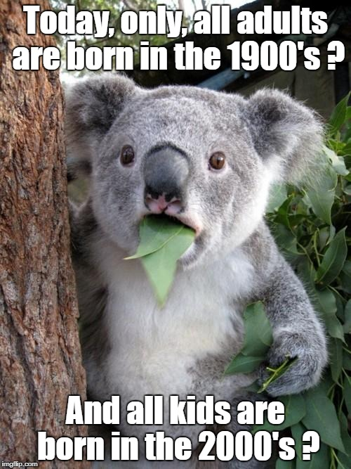 Surprised Koala Meme | Today, only, all adults are born in the 1900's ? And all kids are born in the 2000's ? | image tagged in memes,surprised koala | made w/ Imgflip meme maker