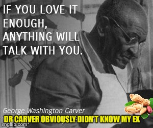 A tough nut to crack | DR CARVER OBVIOUSLY DIDN'T KNOW MY EX | image tagged in peanut butter,inventions,gardening,food,ex week | made w/ Imgflip meme maker