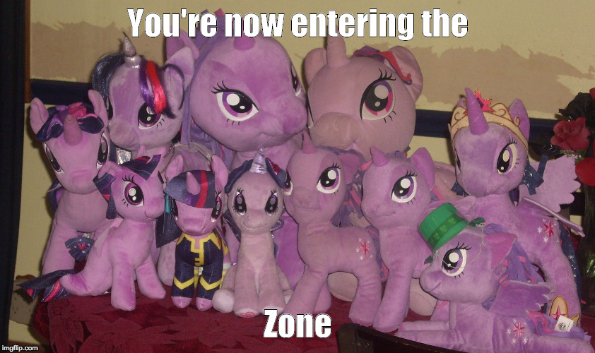 You're now entering the Zone | image tagged in forever twilight | made w/ Imgflip meme maker