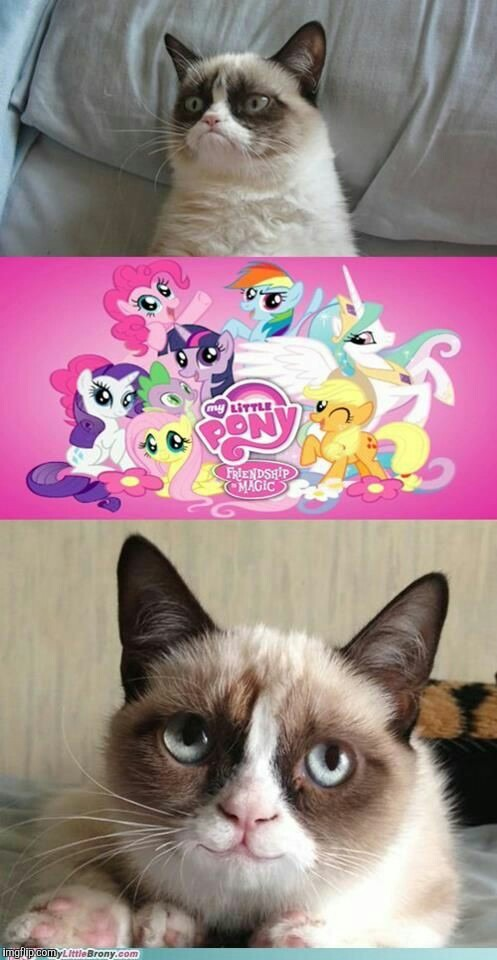 Grumpy Cat meets My Little Pony | image tagged in memes,my little pony,grumpy cat | made w/ Imgflip meme maker