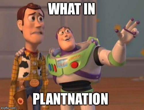 X, X Everywhere Meme | WHAT IN PLANTNATION | image tagged in memes,x,x everywhere,x x everywhere | made w/ Imgflip meme maker