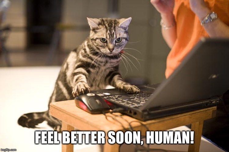 FEEL BETTER SOON, HUMAN! | made w/ Imgflip meme maker