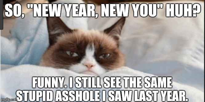 "Same ole same ole. | SO, ""NEW YEAR, NEW YOU"" HUH? FUNNY. I STILL SEE THE SAME STUPID ASSHOLE I SAW LAST YEAR. 
