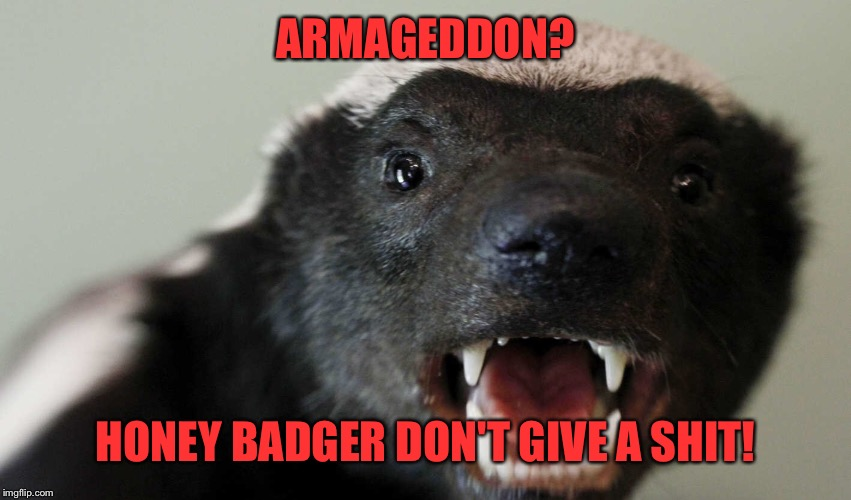 ARMAGEDDON? HONEY BADGER DON'T GIVE A SHIT! | made w/ Imgflip meme maker