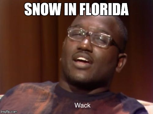 Wack | SNOW IN FLORIDA | image tagged in wack | made w/ Imgflip meme maker