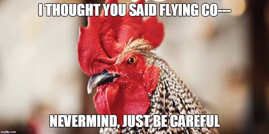 I THOUGHT YOU SAID FLYING CO--- NEVERMIND, JUST BE CAREFUL | made w/ Imgflip meme maker