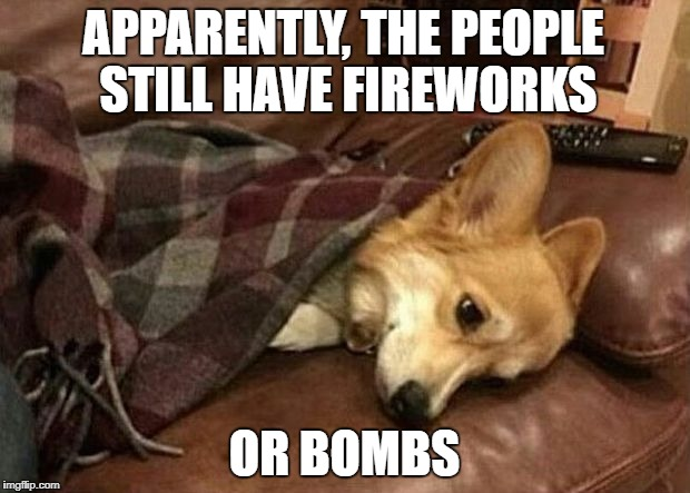 Sad Dog | APPARENTLY, THE PEOPLE STILL HAVE FIREWORKS OR BOMBS | image tagged in sad dog | made w/ Imgflip meme maker