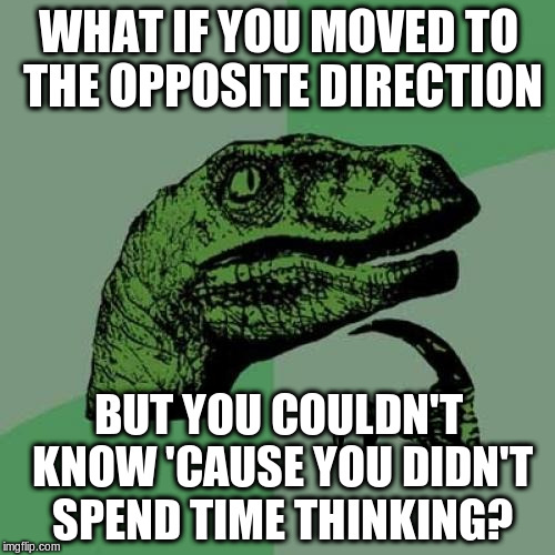 Philosoraptor Meme | WHAT IF YOU MOVED TO THE OPPOSITE DIRECTION BUT YOU COULDN'T KNOW 'CAUSE YOU DIDN'T SPEND TIME THINKING? | image tagged in memes,philosoraptor | made w/ Imgflip meme maker