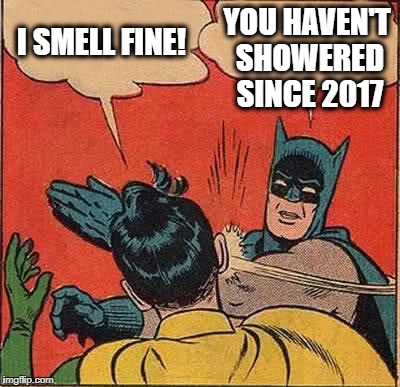 Batman Slapping Robin Meme | I SMELL FINE! YOU HAVEN'T SHOWERED SINCE 2017 | image tagged in memes,batman slapping robin | made w/ Imgflip meme maker