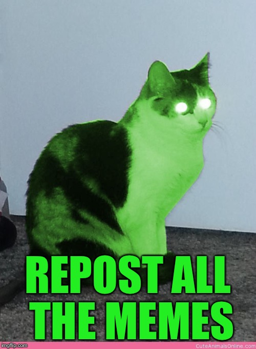 Hypno Raycat | REPOST ALL THE MEMES | image tagged in hypno raycat | made w/ Imgflip meme maker