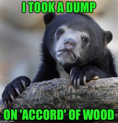 Confession Bear Meme | I TOOK A DUMP ON 'ACCORD' OF WOOD | image tagged in memes,confession bear | made w/ Imgflip meme maker