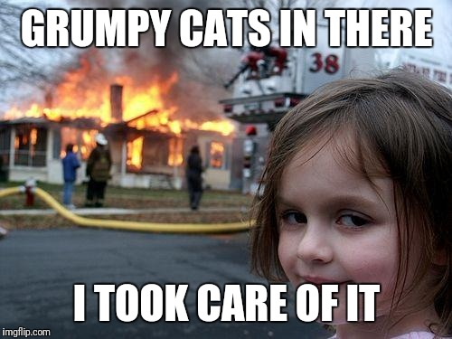Disaster Girl Meme | GRUMPY CATS IN THERE I TOOK CARE OF IT | image tagged in memes,disaster girl | made w/ Imgflip meme maker