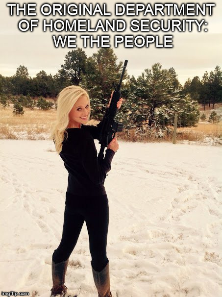 WE THE PEOPLE | THE ORIGINAL DEPARTMENT OF HOMELAND SECURITY: WE THE PEOPLE | image tagged in we the people,tomi lahren,second amendment | made w/ Imgflip meme maker