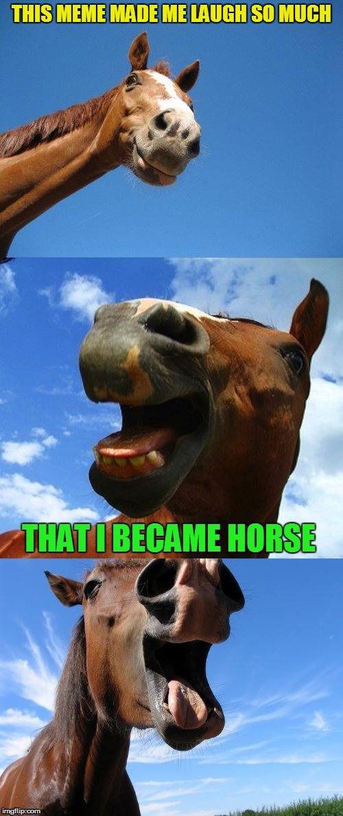 Just Horsing Around | THIS MEME MADE ME LAUGH SO MUCH THAT I BECAME HORSE | image tagged in just horsing around | made w/ Imgflip meme maker