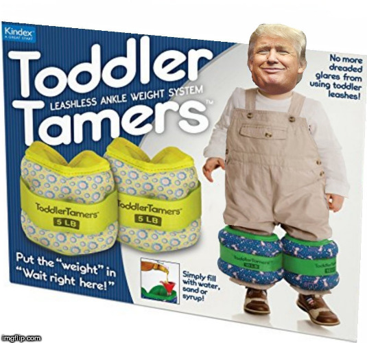 trump toddler | image tagged in trump,baby,donald trump the clown,clown car republicans,trump baby,dumptrump | made w/ Imgflip meme maker