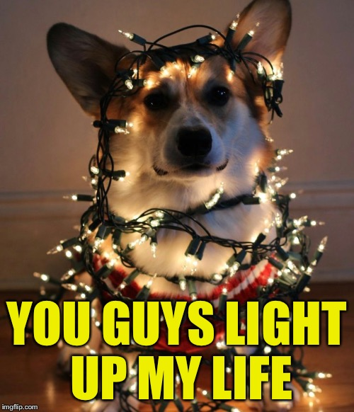 YOU GUYS LIGHT UP MY LIFE | made w/ Imgflip meme maker