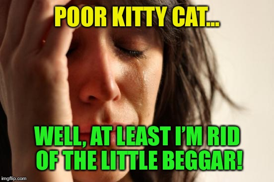 First World Problems Meme | POOR KITTY CAT... WELL, AT LEAST I'M RID OF THE LITTLE BEGGAR! | image tagged in memes,first world problems | made w/ Imgflip meme maker