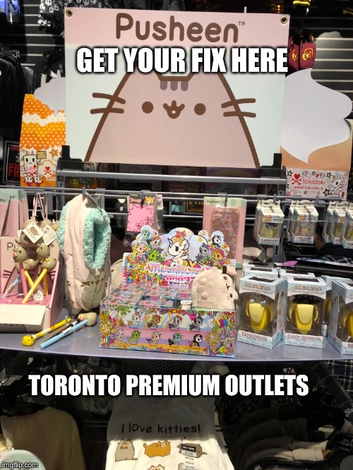 GET YOUR FIX HERE TORONTO PREMIUM OUTLETS | image tagged in memes,pusheen | made w/ Imgflip meme maker