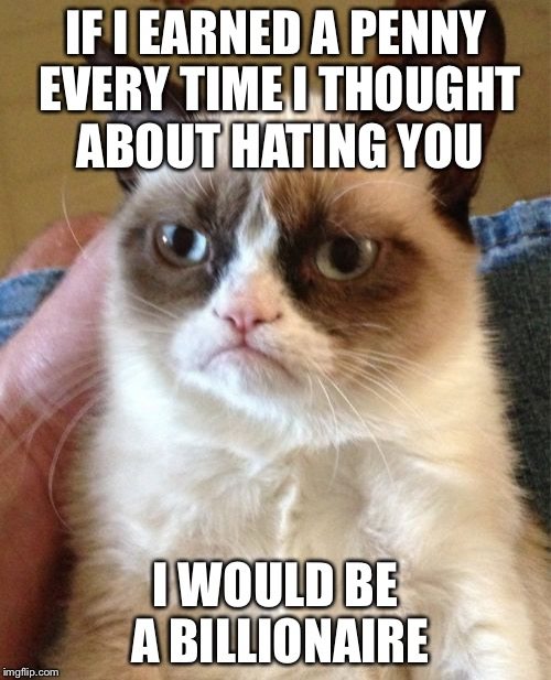 Grumpy Cat Meme | IF I EARNED A PENNY EVERY TIME I THOUGHT ABOUT HATING YOU I WOULD BE A BILLIONAIRE | image tagged in memes,grumpy cat | made w/ Imgflip meme maker