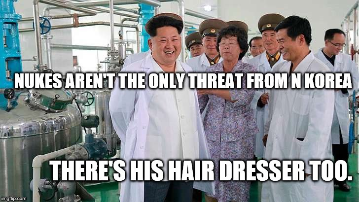 NUKES AREN'T THE ONLY THREAT FROM N KOREA THERE'S HIS HAIR DRESSER TOO. | image tagged in pyongyang priceless | made w/ Imgflip meme maker