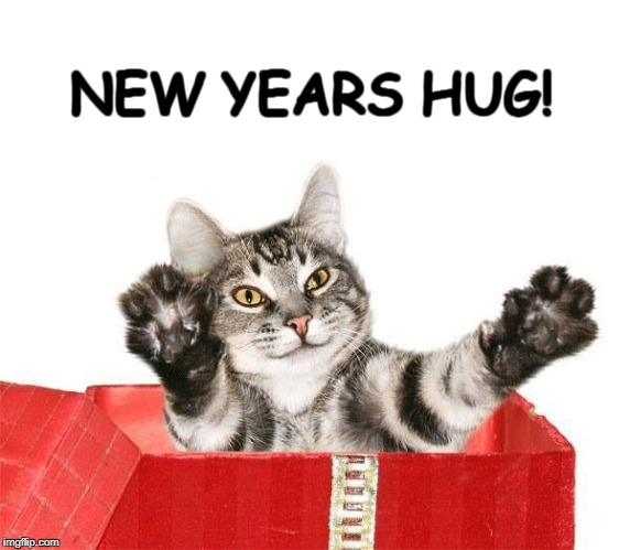 NEW YEARS HUG! | image tagged in happy new year,cat,kitty,hug | made w/ Imgflip meme maker