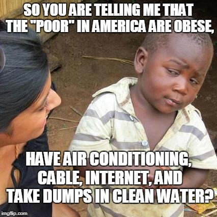 "Poverty is a matter of perspective  | SO YOU ARE TELLING ME THAT THE ""POOR"" IN AMERICA ARE OBESE, HAVE AIR CONDITIONING, CABLE, INTERNET, AND TAKE DUMPS IN CLEAN WATER? 