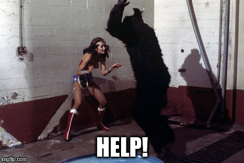 Help! | HELP! | image tagged in wonder woman,gorilla,save me | made w/ Imgflip meme maker
