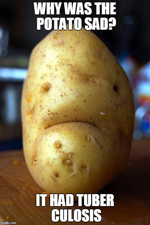 sad pun potato | WHY WAS THE POTATO SAD? IT HAD TUBER CULOSIS | image tagged in sad potato,tuberculosis,tb,potato,potatoes,puns | made w/ Imgflip meme maker