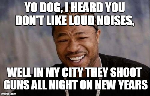 Yo Dawg Heard You Meme | YO DOG, I HEARD YOU DON'T LIKE LOUD NOISES, WELL IN MY CITY THEY SHOOT GUNS ALL NIGHT ON NEW YEARS | image tagged in memes,yo dawg heard you | made w/ Imgflip meme maker