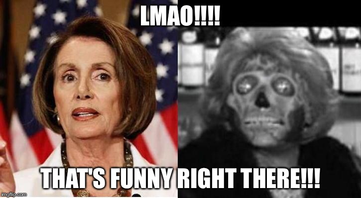 LMAO!!!! THAT'S FUNNY RIGHT THERE!!! | image tagged in nancy pelosi | made w/ Imgflip meme maker