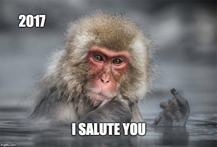 Salute to 2017 | 2017 I SALUTE YOU | image tagged in macaque | made w/ Imgflip meme maker
