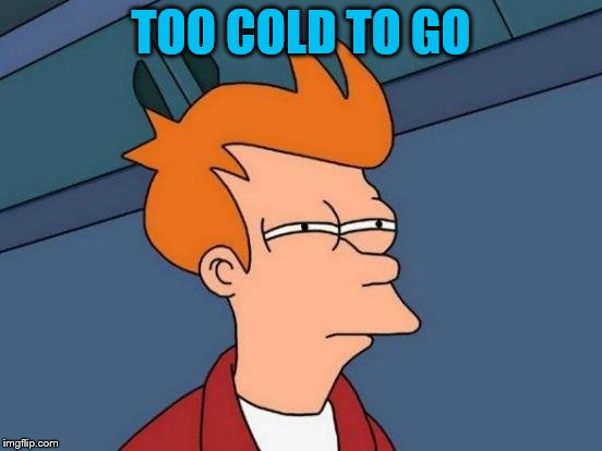 Futurama Fry Meme | TOO COLD TO GO | image tagged in memes,futurama fry | made w/ Imgflip meme maker
