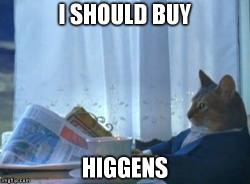 I Should Buy A Boat Cat Meme | I SHOULD BUY HIGGENS | image tagged in memes,i should buy a boat cat | made w/ Imgflip meme maker
