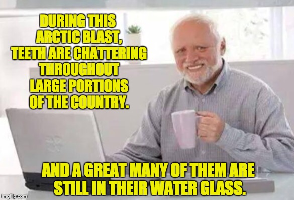 Harold | DURING THIS ARCTIC BLAST, TEETH ARE CHATTERING THROUGHOUT LARGE PORTIONS OF THE COUNTRY. AND A GREAT MANY OF THEM ARE STILL IN THEIR WATER G | image tagged in harold | made w/ Imgflip meme maker
