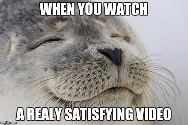 Satisfied Seal Meme | WHEN YOU WATCH A REALY SATISFYING VIDEO | image tagged in memes,satisfied seal | made w/ Imgflip meme maker
