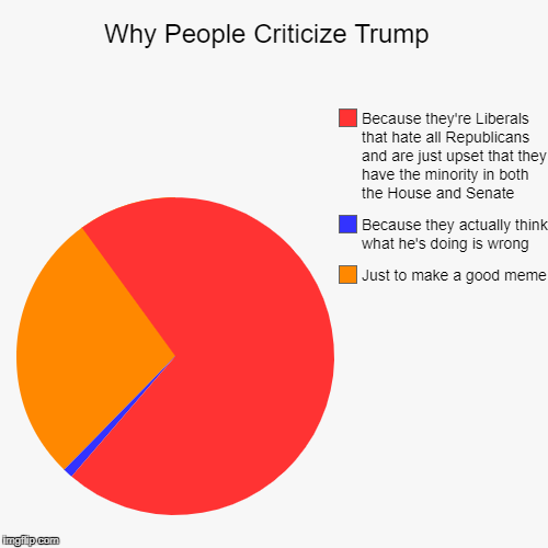 Why People Criticize Trump  | Just to make a good meme, Because they actually think what he's doing is wrong, Because they're Liberals that  | image tagged in funny,pie charts | made w/ Imgflip pie chart maker