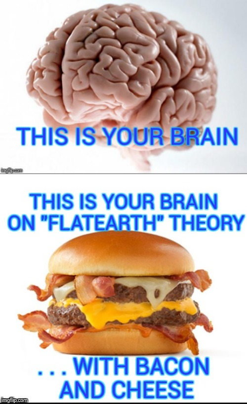 You need to think with a better brain than that | image tagged in flat earth,dumbass,positive thinking,results,negativity | made w/ Imgflip meme maker