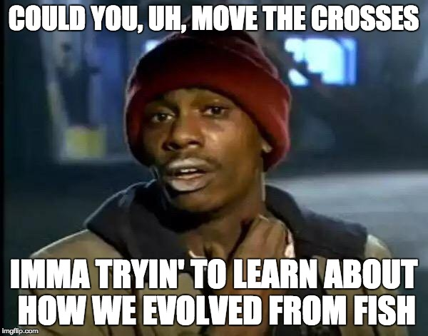 Y'all Got Any More Of That Meme | COULD YOU, UH, MOVE THE CROSSES IMMA TRYIN' TO LEARN ABOUT HOW WE EVOLVED FROM FISH | image tagged in memes,y'all got any more of that | made w/ Imgflip meme maker