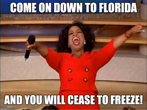 NH has is hard this year | COME ON DOWN TO FLORIDA AND YOU WILL CEASE TO FREEZE! | image tagged in memes,oprah you get a,florida,new hampshire,winter,cold | made w/ Imgflip meme maker