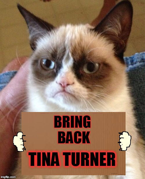 BRING BACK TINA TURNER | made w/ Imgflip meme maker