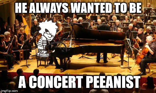 The Kid Is A Natural | HE ALWAYS WANTED TO BE A CONCERT PEEANIST | image tagged in concert pianist,memes,sucess kid,what if i told you | made w/ Imgflip meme maker