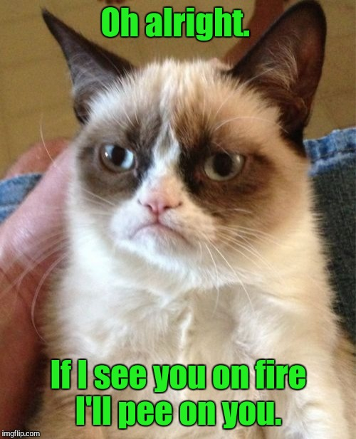 Grumpy Cat Meme | Oh alright. If I see you on fire I'll pee on you. | image tagged in memes,grumpy cat | made w/ Imgflip meme maker