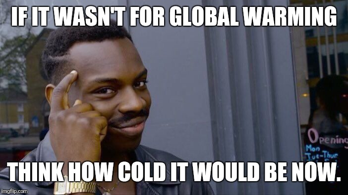 Roll Safe Think About It Meme | IF IT WASN'T FOR GLOBAL WARMING THINK HOW COLD IT WOULD BE NOW. | image tagged in memes,roll safe think about it | made w/ Imgflip meme maker